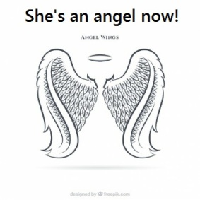1angel-wings-she